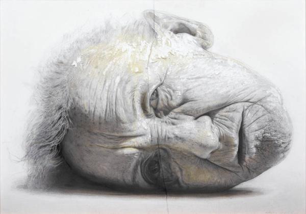 Retrato de insomnio de Golucho. 2007