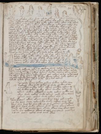 Ilustración perteneciente al Manuscrito Voynich ¿siglo XVI?