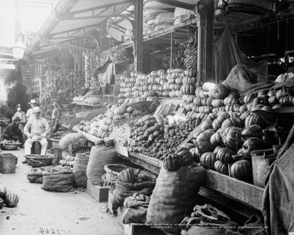 La Habana. Puesto de verduras en el Mercado Tocón en 1904