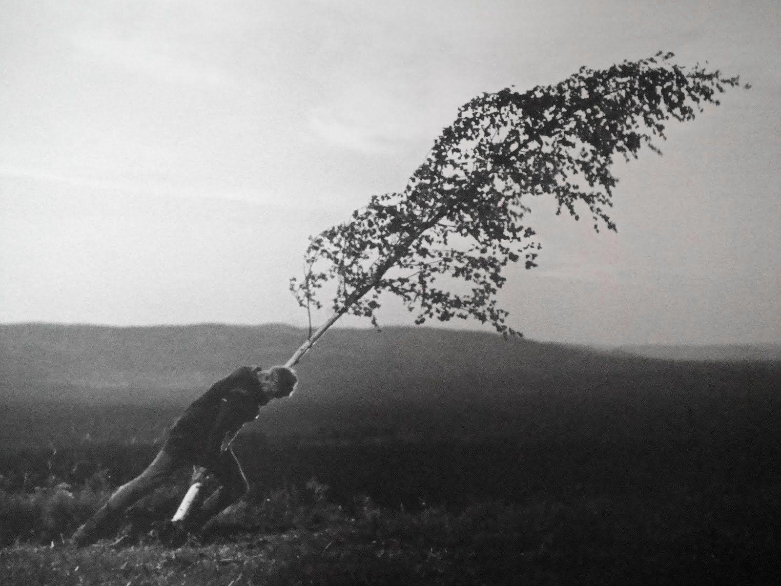 Fotograma de Jungfrukällan (El Manantial de la Doncella) de Ingmar Bergman. 1960
